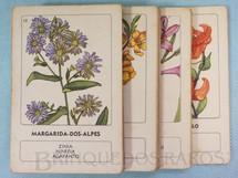 1. Brinquedos antigos - Melhoramentos - Jogo Quarteto Flores Silvestres completo com 12 grupos de 4 cartas Década de 1960